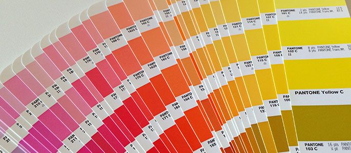 pantone colors for logo design
