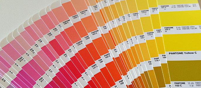 pantone colors for logo design
